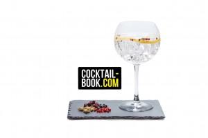 Cocktail Book und Gin Tonic